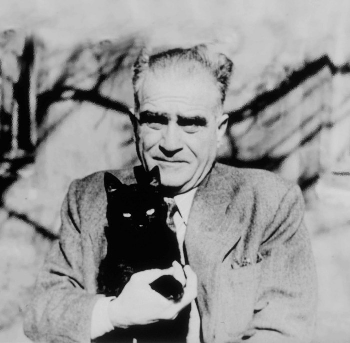 ahmet hamdi tanpinar ve kedi